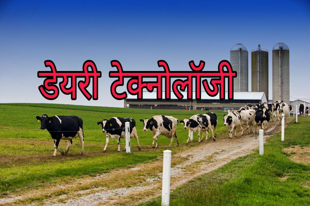 Dairy Technology course, career, scope and salary details