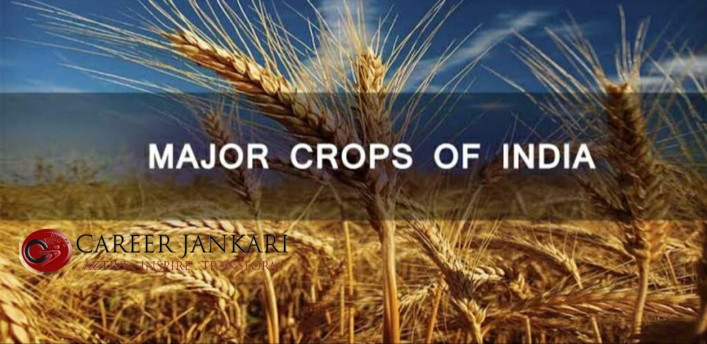 Major crops in India